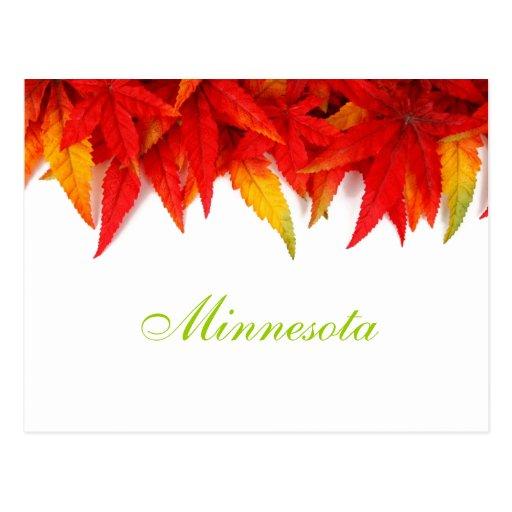 Postal de las hojas de otoño de Minnesota