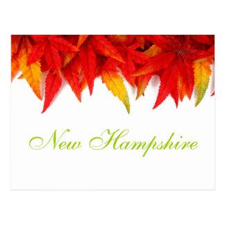 Postal de las hojas de otoño de New Hampshire