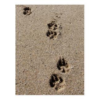 Postal de las huellas del perro