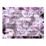 Postal de las lilas del 29:11 de Jeremiah
