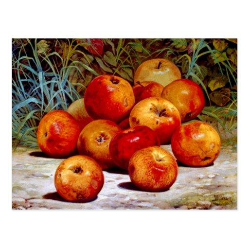Postal de las manzanas
