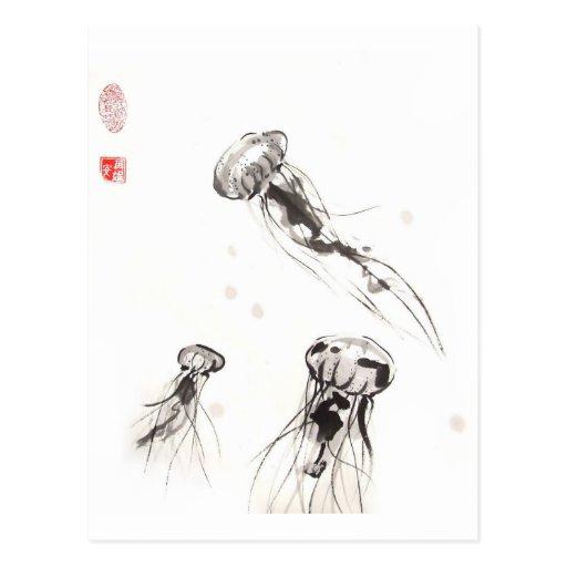 Postal de las medusas del Chrysaora