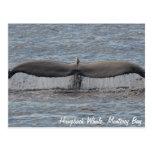 Postal de las platijas de la ballena jorobada
