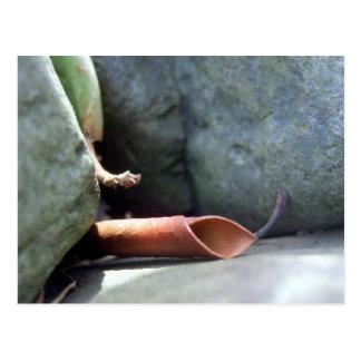 Postal de Leafable