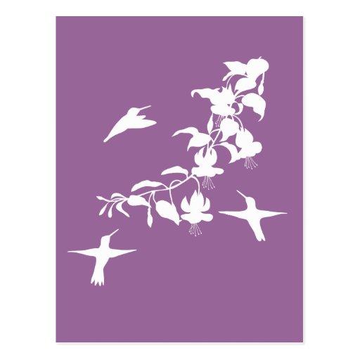 Postal de los colibríes