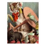 Postal de los gatos de Naghty