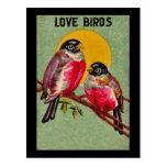Postal de los pájaros del amor