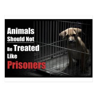 Postal de los presos del animal no