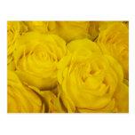 Postal de los rosas amarillos