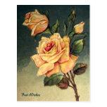 Postal de los rosas amarillos del vintage