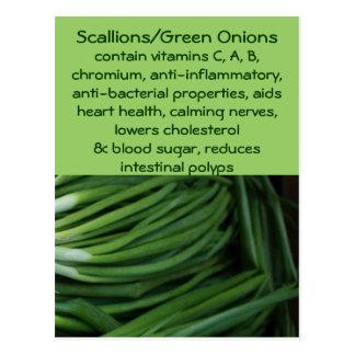 Postal de los Scallions/de las cebollas verdes