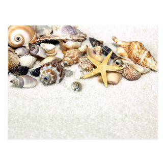 Postal de los Seashells