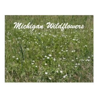 Postal de los Wildflowers de Michigan