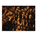 Postal de madera quemada