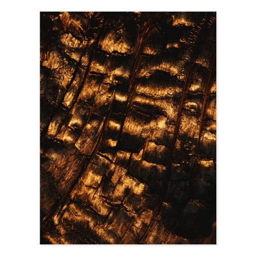 Postal de madera quemada vertical