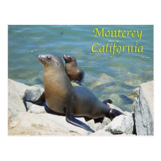 Postal de Monterey California