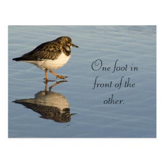 Postal de motivación del pájaro lindo de Sadpiper