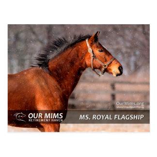 Postal de ms Royal Flagship