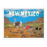 """Postal de New México """"le faltamos…"""" por Jessica H."""