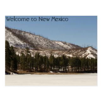 Postal de New México