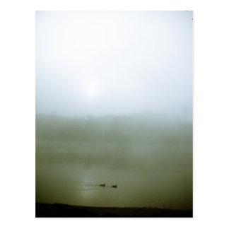 Postal de niebla de la costa 07