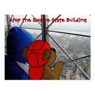 """""""Postal de NY de la opinión Dizzying del oso"""" Postales"""