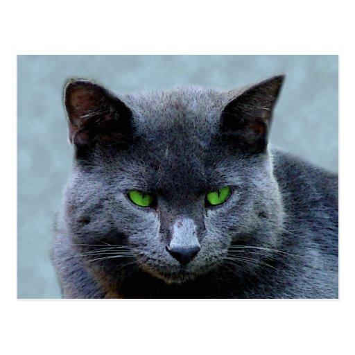 Postal de ojos verdes del gato