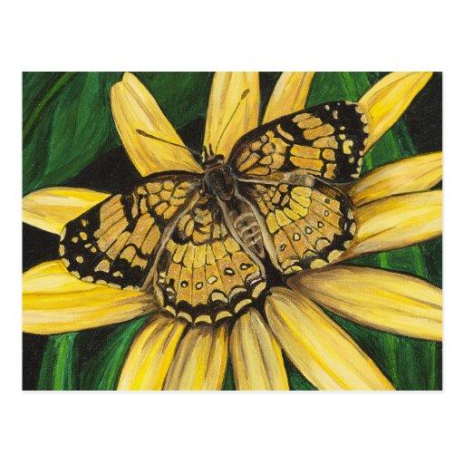 Postal de oro de la mariposa
