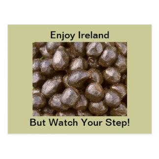 Postal de Poo de las ovejas de Irlanda