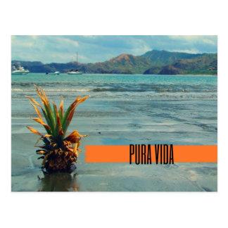 Postal de Pura Vida de la playa de Costa Rica
