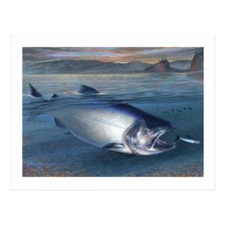 Postal de rey salmón