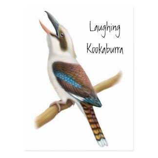 Postal de risa de Kookaburra