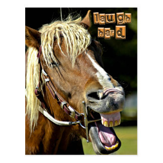 Postal de risa del caballo