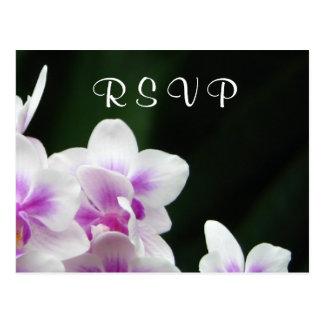 Postal de RSVP de la orquídea