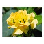 Postal de RSVP del rosa amarillo