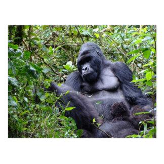 Postal de Rwanda de los gorilas