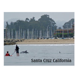Postal de Santa Cruz California