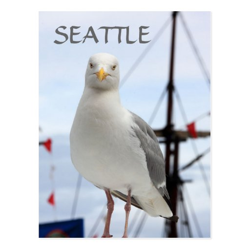 Postal de Seattle, de la gaviota y del barco