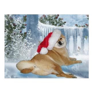 Postal de Shiba Inu del navidad