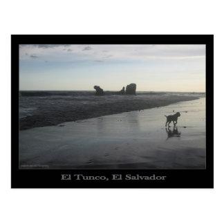 Postal de Tunco - paseo de la playa de la madrugad