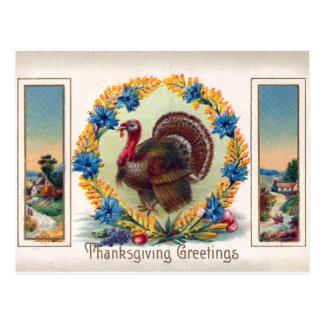 Postal de Turquía del día de la acción de gracias