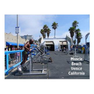 ¡Postal de Venecia de la playa del músculo