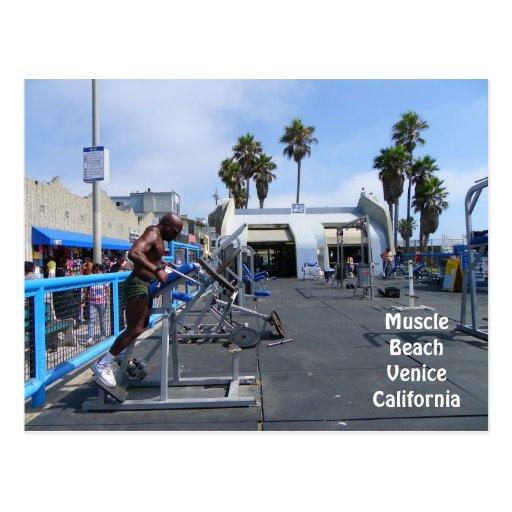 ¡Postal de Venecia de la playa del músculo!