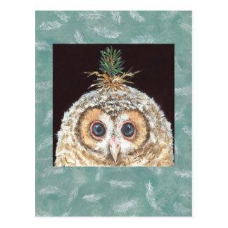 Postal de Zane (pino de enchufe del owlet w)
