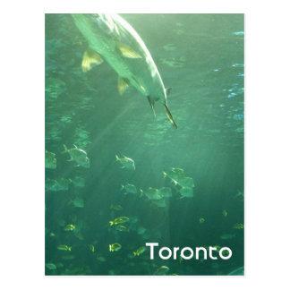 Postal del acuario de Toronto