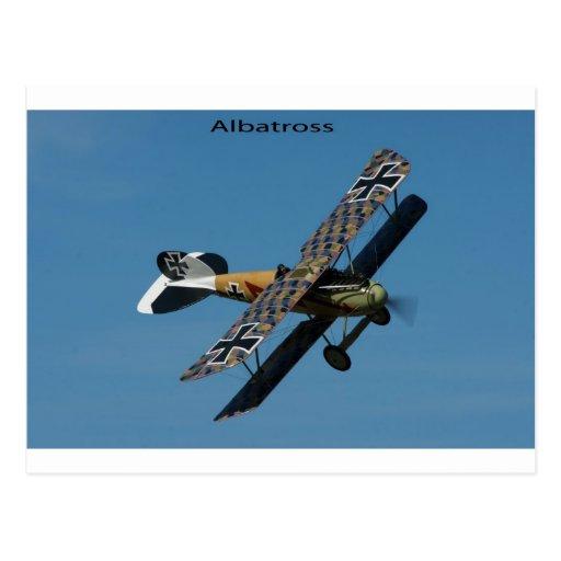postal del albatros