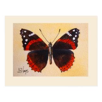 Postal del almirante rojo mariposa
