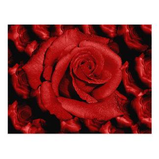 Postal del amor de los rosas rojos