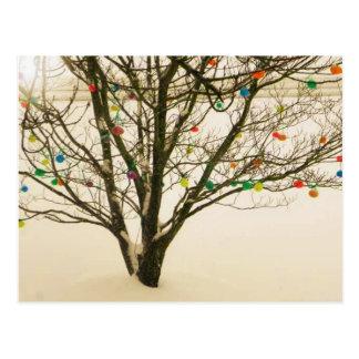 Postal del árbol de Pascua
