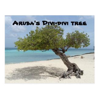 Postal del árbol del Divi-divi de Aruba